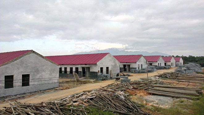 养殖场屋面隔热防腐采用合成树脂瓦案例