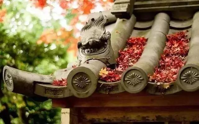 这样的院子,只有中国人驾驭得了它!