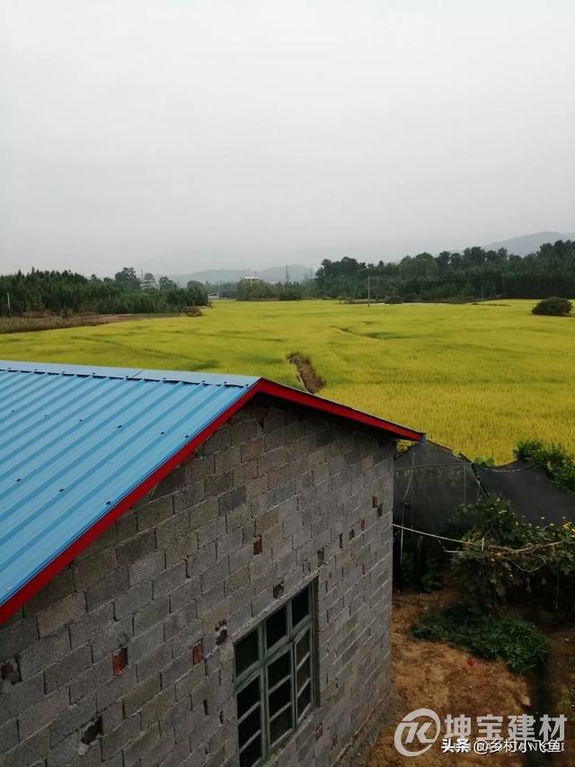 """为什么一些农村现在很流行""""彩钢顶""""?到底有啥好处?"""