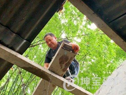 青白江小山村修树脂瓦房、清淤、引水入池