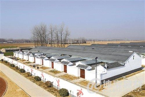 徐州合成树脂瓦厂家